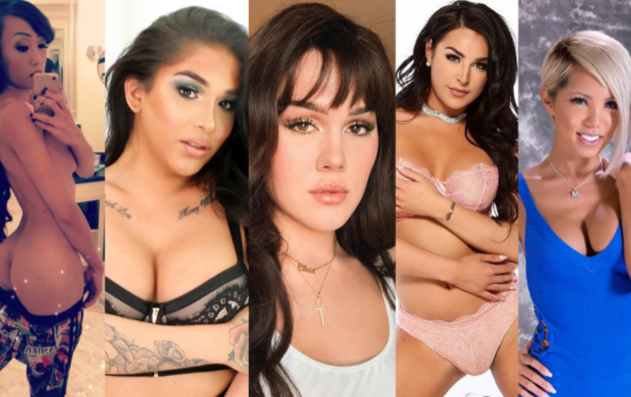 Why Transsexual Porn Stars Are More Attractive ?