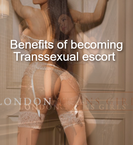 How can Transsexuals start work as a Transsexual escort